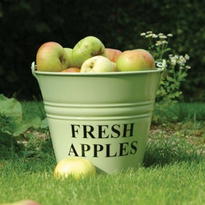 Fresh Apples Buckets